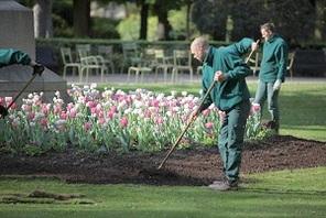 S nat junior le jardin du luxembourg for Arbres jardin du luxembourg